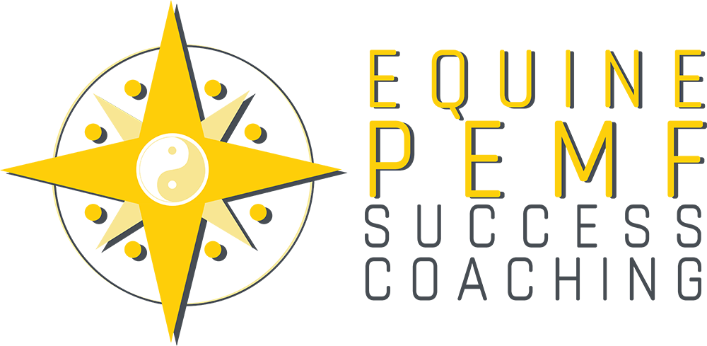 Equine PEMF Success Coaching